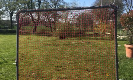 Training in Krisenzeiten – Lacrosse Tor DIY